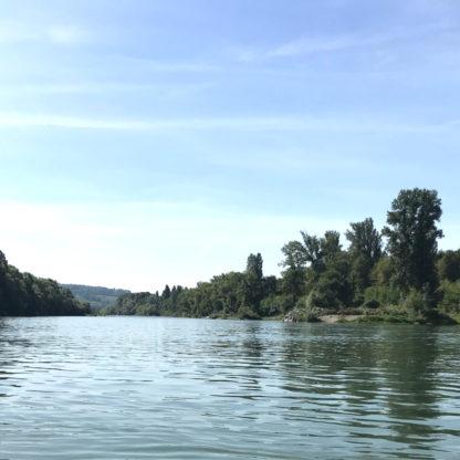 Stand Up Paddle Tour Altrhein Landschaft