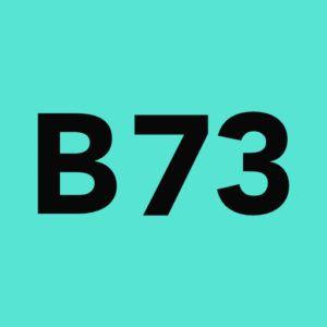 Birs 73 Icon 2