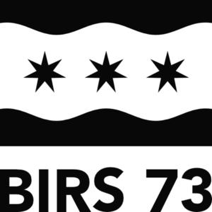 Birs 73 Icon